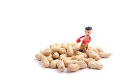 Little peanut man between peanuts Royalty Free Stock Image