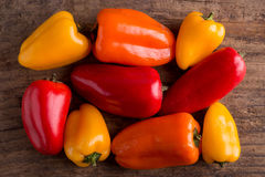 Little peppers Stock Image