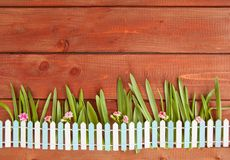 Little picket fence on wooden background. Little picket fence with grass and flowers on rustic wooden background royalty free stock photos