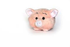 Little pig. Little pink pig on a white background Stock Photo