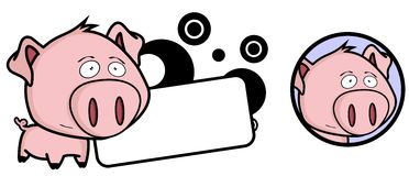 Little pig big head expression copyspace Stock Photo