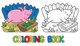 Little pig coloring book Royalty Free Stock Images