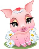 Little pig sitting in daisies. vector illustration