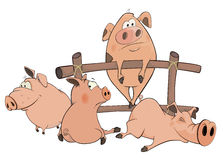 Little pigs cartoon Royalty Free Stock Photo