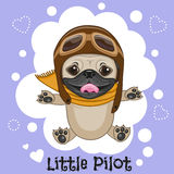 Little Pilot Stock Photo