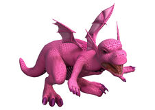 Little Pink Dragon Stock Photos