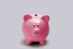 Little pink piggy bank. On gray background Stock Photos