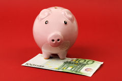 Little pink piggy bank standing on hunderd euro banknote on red background Stock Photos