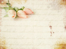 Little pink roses bouquet Stock Photo