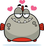 Little Piranha in Love Royalty Free Stock Photos
