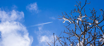 Little plane with smoke trail in the blue sky Royalty Free Stock Photo