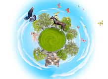 Little planet Royalty Free Stock Images