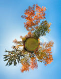 Little planet - autumn forest globe Royalty Free Stock Photography