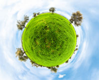 Little planet with clear thick grass lawn Royalty Free Stock Photos