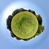 Little planet – meadow in summer Stock Images