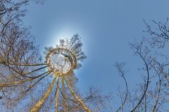 Little planet. Spherical aerial 360 panorama view in the winter forest in winter sunny day on blue background royalty free stock image