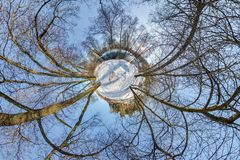 Little planet. Spherical aerial 360 panorama view in the winter forest in winter sunny day on blue background royalty free stock images