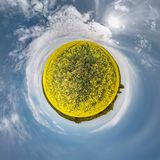 Little planet spherical panorama 360 degrees. Spherical aerial view  in blooming in field rapseed canola colza. Curvature of space stock photography