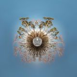 Little planet Stock Images