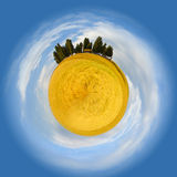 Little planet of Tuscany. Famous tree group in Val d'Orcia as little planet Stock Photos