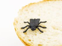 Little plastic fly (bug) on bread Royalty Free Stock Image
