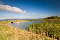 Little pond in the autumn countryside Royalty Free Stock Photography