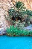 Little pond in Chebika oasis at border of Sahara, Tunisia, Afric Royalty Free Stock Photography