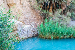 Little pond in Chebika oasis at border of Sahara, Tunisia, Afric Royalty Free Stock Photos