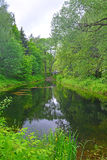 A little pond in Dendrology garden in Pereslavl-Zalessky city Royalty Free Stock Photo