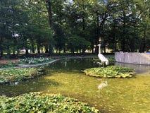 Free Little Pond With Crane Bird Statue In The Spa Garden Julijes Park Or Umjetno Jezerce Sa Statuom Zdrala U Julijevom Parku Royalty Free Stock Photos - 157638288