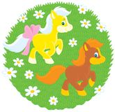 Little Ponies Royalty Free Stock Images