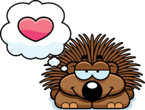 Little Porcupine in Love Stock Photography