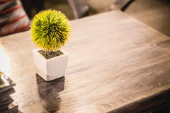 Little pot on table Royalty Free Stock Photography