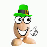 Little potato man elf Royalty Free Stock Images