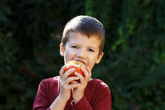 Little preschooler boy eating apple Stock Photo