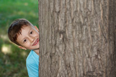 Little preschooler boy hide-and-seek at tree Stock Images