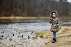 Little preschooler girl feeding ducks at autumn Stock Photos