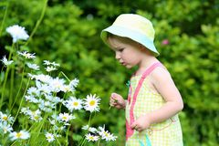 Little preschooler girl playing in flower garden Royalty Free Stock Images