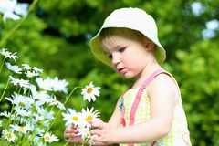 Little preschooler girl playing in flower garden Stock Photos