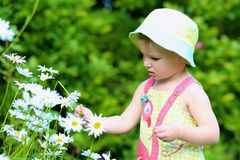 Little preschooler girl playing in flower garden Royalty Free Stock Image