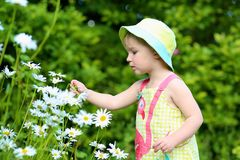 Little preschooler girl playing in flower garden Stock Photo