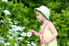 Little preschooler girl playing in flower garden Stock Images