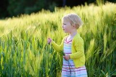 Little preschooler girl plays in wheat field Stock Images