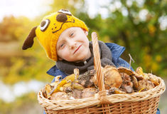 Little pretty boy in funny hat with big basket of mushrooms Royalty Free Stock Photo