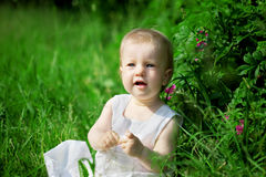 Little pretty girl on a green lawn Royalty Free Stock Photography