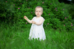 Little pretty girl on a green lawn. The image of a little pretty girl on a green lawn Stock Photo