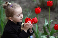Little pretty girl. little girl looks at flowers spring tulips Royalty Free Stock Photo