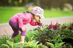 Little Pretty Girl Smelling Flowers In The Garden Royalty Free Stock Photo