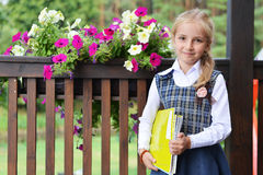 Little pretty schoolgirl Royalty Free Stock Photos