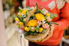 Little pretty wicker basket with winter flower composition Royalty Free Stock Photos